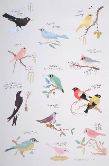 Bird poster - HabitatKid blog